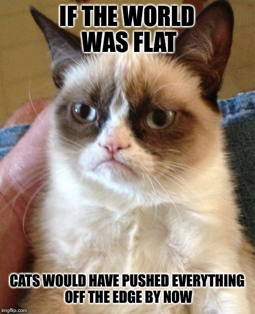 Grumpy Cat Meme | IF THE WORLD WAS FLAT CATS WOULD HAVE PUSHED EVERYTHING OFF THE EDGE BY NOW | image tagged in memes,grumpy cat,funny,flat earth,cats,stop reading the tags | made w/ Imgflip meme maker