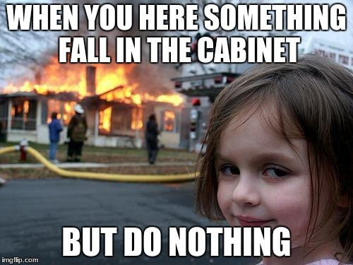 Disaster Girl Meme | WHEN YOU HERE SOMETHING FALL IN THE CABINET BUT DO NOTHING | image tagged in memes,disaster girl | made w/ Imgflip meme maker