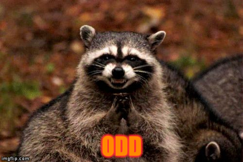 Evil Plotting Raccoon Meme | ODD | image tagged in memes,evil plotting raccoon | made w/ Imgflip meme maker