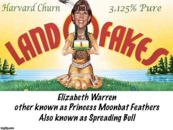 Massachusetts native | . | image tagged in memes,elizabeth warren,fake heritage,indian,native american,pocahontas | made w/ Imgflip meme maker