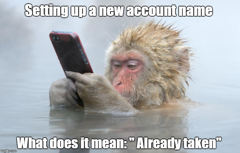 "monkey in a hot tub with iphone | Setting up a new account name What does it mean: "" Already taken"" 
