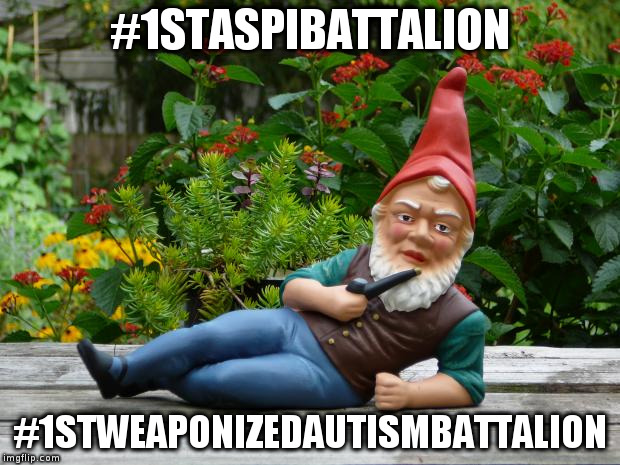 #1STASPIBATTALION #1STWEAPONIZEDAUTISMBATTALION | image tagged in gnome sayin' | made w/ Imgflip meme maker