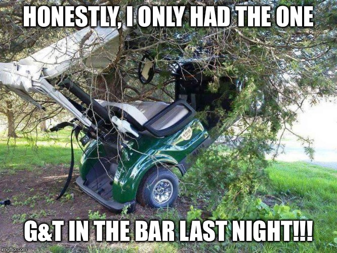 Golf Cart in Tree |  HONESTLY, I ONLY HAD THE ONE; G&T IN THE BAR LAST NIGHT!!! | image tagged in golf cart in tree | made w/ Imgflip meme maker