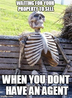 Waiting Skeleton Meme | WAITING FOR YOUR PROPERTY TO SELL WHEN YOU DONT HAVE AN AGENT | image tagged in memes,waiting skeleton | made w/ Imgflip meme maker