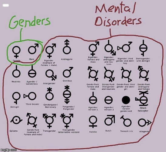 BBBBB | image tagged in there are only two genders,liberalism is a mental disorder,mlg pro | made w/ Imgflip meme maker