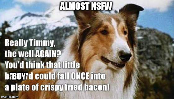 ALMOST NSFW *BOY* | image tagged in lassie | made w/ Imgflip meme maker