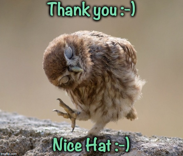 Thank you :-) Nice Hat :-) | made w/ Imgflip meme maker