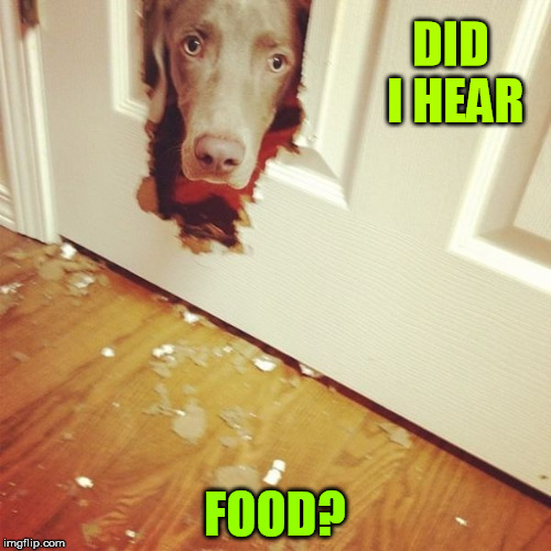DID I HEAR FOOD? | made w/ Imgflip meme maker