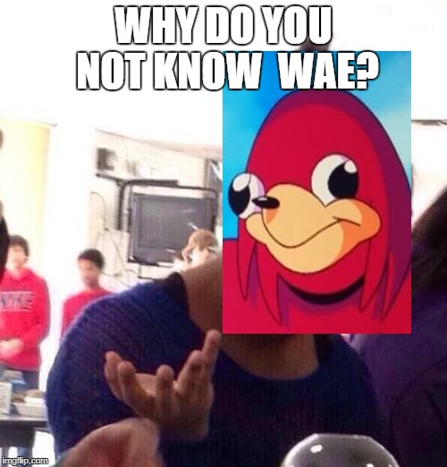 Black Girl Wat Meme | WHY DO YOU NOT KNOW  WAE? | image tagged in memes,black girl wat | made w/ Imgflip meme maker