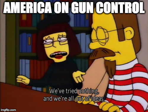 Gun control | AMERICA ON GUN CONTROL | image tagged in gun control,gun laws,guns | made w/ Imgflip meme maker