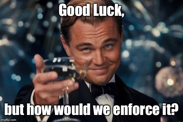Leonardo Dicaprio Cheers Meme | Good Luck, but how would we enforce it? | image tagged in memes,leonardo dicaprio cheers | made w/ Imgflip meme maker