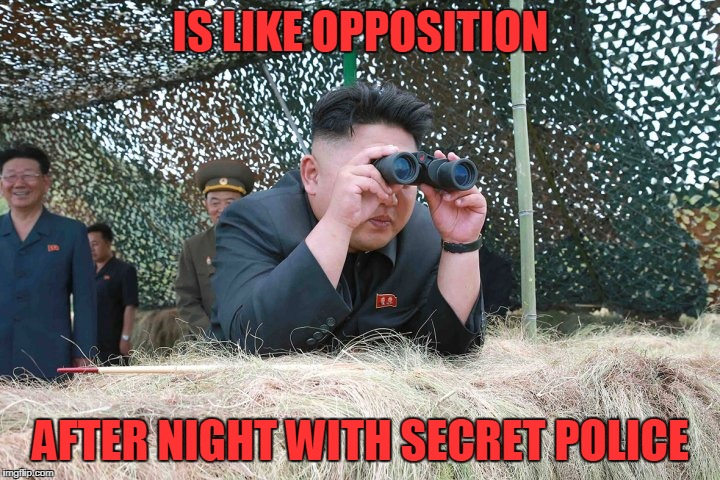 IS LIKE OPPOSITION AFTER NIGHT WITH SECRET POLICE | made w/ Imgflip meme maker