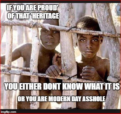 Young Slaves | IF YOU ARE PROUD' OF THAT 'HERITAGE OR YOU ARE MODERN DAY ASSHOLE YOU EITHER DONT KNOW WHAT IT IS | image tagged in young slaves | made w/ Imgflip meme maker