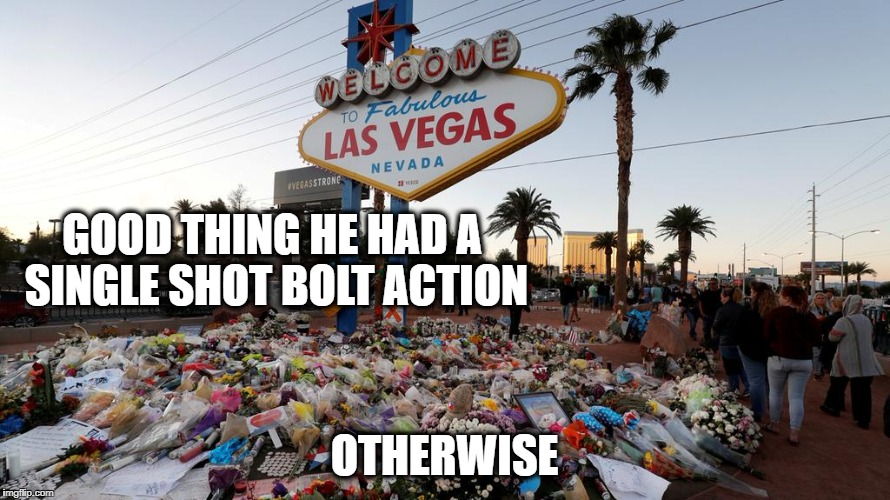 Too Many Guns | GOOD THING HE HAD A SINGLE SHOT BOLT ACTION OTHERWISE | image tagged in too many guns | made w/ Imgflip meme maker