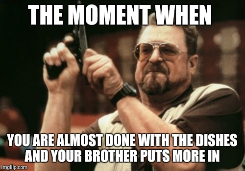 Am I The Only One Around Here Meme | THE MOMENT WHEN YOU ARE ALMOST DONE WITH THE DISHES AND YOUR BROTHER PUTS MORE IN | image tagged in memes,am i the only one around here | made w/ Imgflip meme maker