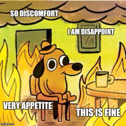SO DISCOMFORT I AM DISAPPOINT VERY APPETITE THIS IS FINE | made w/ Imgflip meme maker