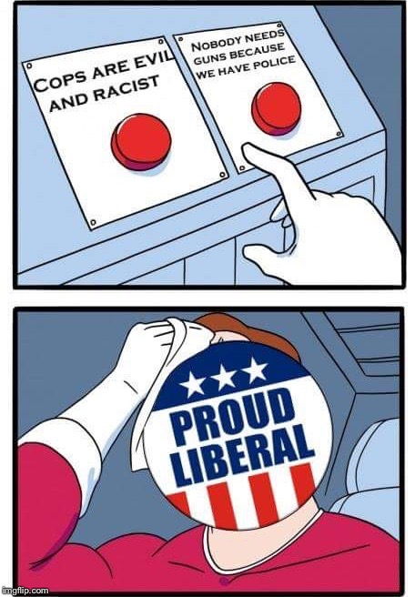 . | image tagged in proud liberal | made w/ Imgflip meme maker