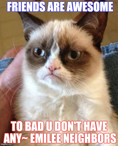 Grumpy Cat Meme | FRIENDS ARE AWESOME TO BAD U DON'T HAVE ANY~ EMILEE NEIGHBORS | image tagged in memes,grumpy cat,scumbag | made w/ Imgflip meme maker