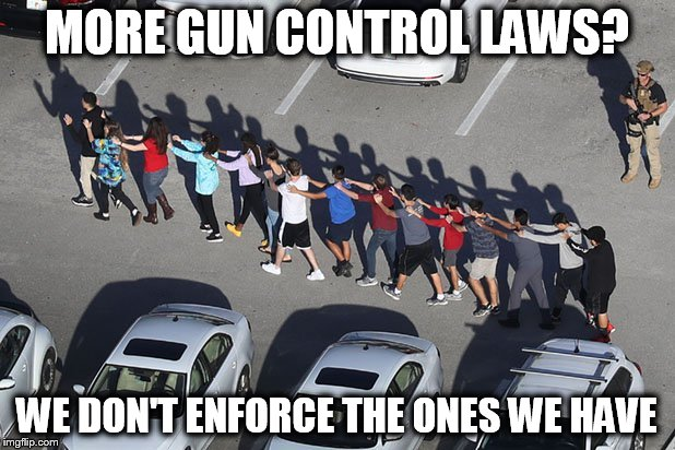 Finish What's On Your Plate | MORE GUN CONTROL LAWS? WE DON'T ENFORCE THE ONES WE HAVE | image tagged in gun control | made w/ Imgflip meme maker