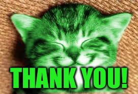 happy RayCat | THANK YOU! | image tagged in happy raycat | made w/ Imgflip meme maker
