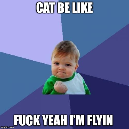 Success Kid Meme | CAT BE LIKE F**K YEAH I'M FLYIN | image tagged in memes,success kid | made w/ Imgflip meme maker