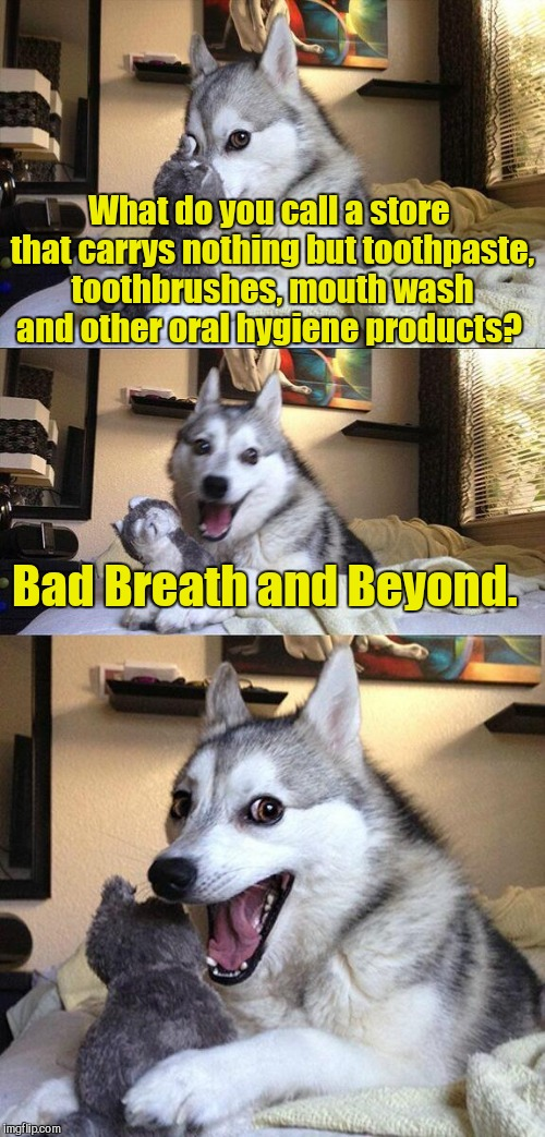 I used this as a comment some time ago. Socrates suggested that I submit it.  | What do you call a store that carrys nothing but toothpaste, toothbrushes, mouth wash and other oral hygiene products? Bad Breath and Beyond | image tagged in memes,bad pun dog | made w/ Imgflip meme maker