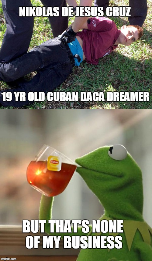 Sure, deflect! | NIKOLAS DE JESUS CRUZ 19 YR OLD CUBAN DACA DREAMER BUT THAT'S NONE OF MY BUSINESS | image tagged in daca,dreamer,nikolas cruz,none of my business | made w/ Imgflip meme maker