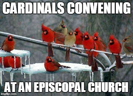 Ecumenicalism At Its Finest | CARDINALS CONVENING AT AN EPISCOPAL CHURCH | image tagged in cardinals on a powerline | made w/ Imgflip meme maker