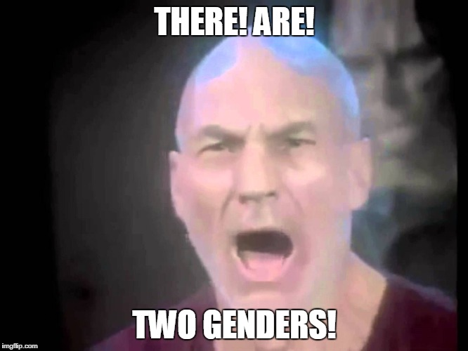 There are four lights | THERE! ARE! TWO GENDERS! | image tagged in there are four lights | made w/ Imgflip meme maker