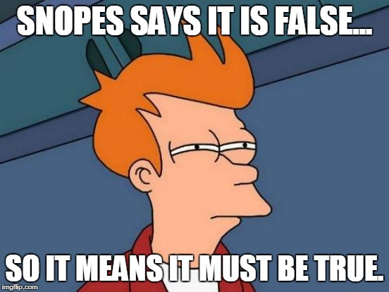 Futurama Fry Meme | SNOPES SAYS IT IS FALSE... SO IT MEANS IT MUST BE TRUE. | image tagged in memes,futurama fry | made w/ Imgflip meme maker