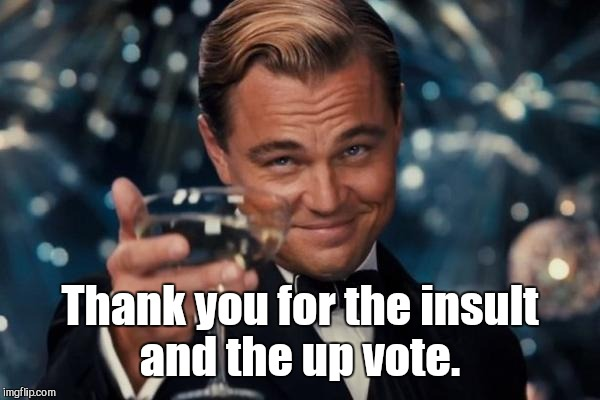 Leonardo Dicaprio Cheers Meme | Thank you for the insult and the up vote. | image tagged in memes,leonardo dicaprio cheers | made w/ Imgflip meme maker