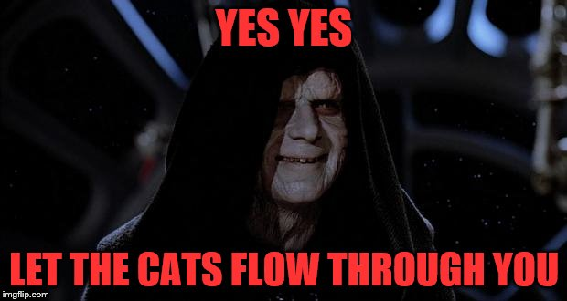YES YES LET THE CATS FLOW THROUGH YOU | made w/ Imgflip meme maker