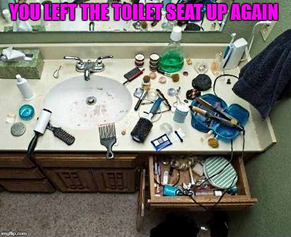 you left the toilet seat up again  | YOU LEFT THE TOILET SEAT UP AGAIN | image tagged in toilet | made w/ Imgflip meme maker