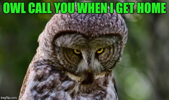 OWL CALL YOU WHEN I GET HOME | made w/ Imgflip meme maker