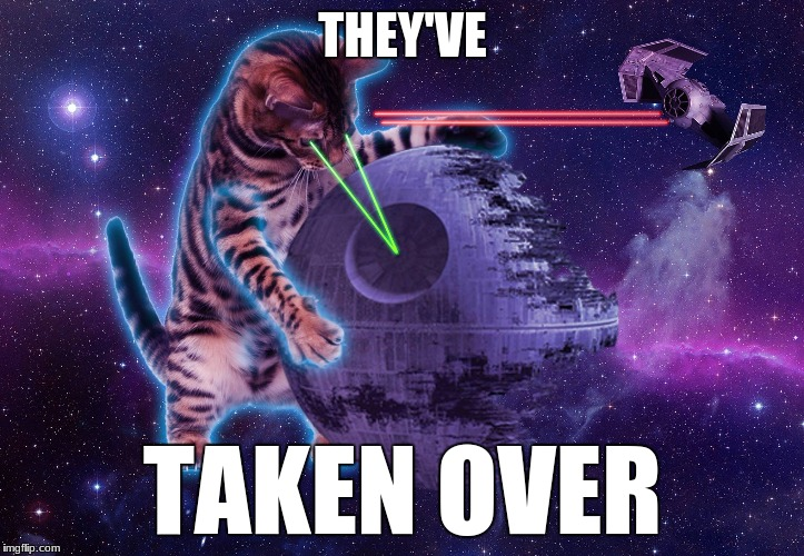 star wars laser cat | THEY'VE TAKEN OVER | image tagged in star wars laser cat | made w/ Imgflip meme maker