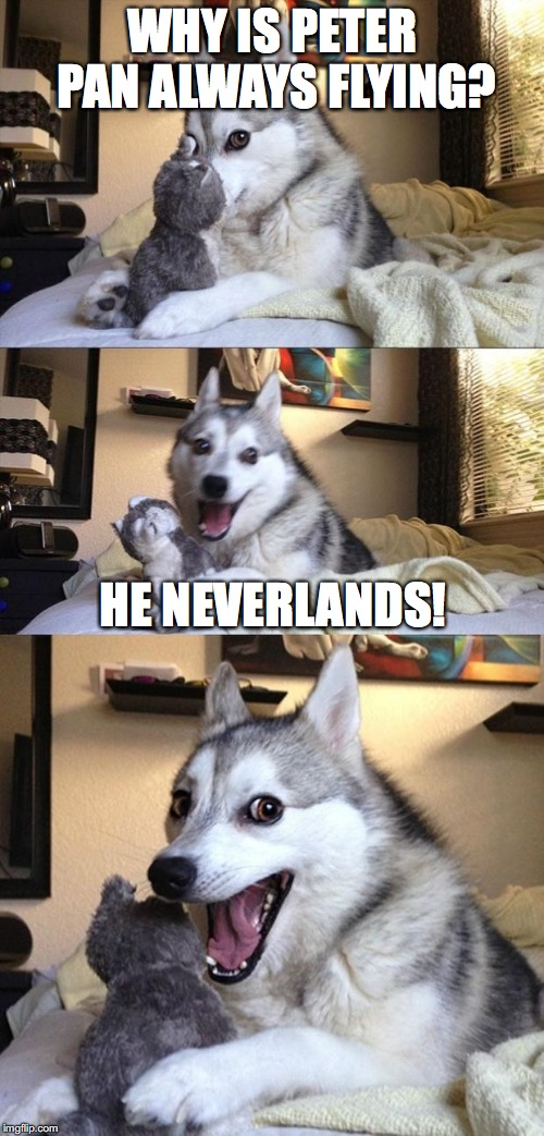Le bad joke | WHY IS PETER PAN ALWAYS FLYING? HE NEVERLANDS! | image tagged in bad joke dog | made w/ Imgflip meme maker