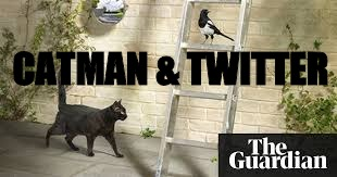 CATMAN & TWITTER | made w/ Imgflip meme maker