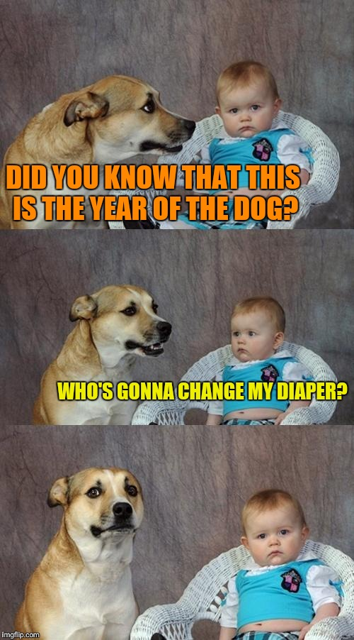 Dad Joke Dog Meme | DID YOU KNOW THAT THIS IS THE YEAR OF THE DOG? WHO'S GONNA CHANGE MY DIAPER? | image tagged in memes,dad joke dog | made w/ Imgflip meme maker