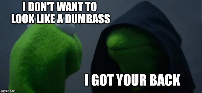 Evil Kermit Meme | I DON'T WANT TO LOOK LIKE A DUMBASS I GOT YOUR BACK | image tagged in memes,evil kermit | made w/ Imgflip meme maker