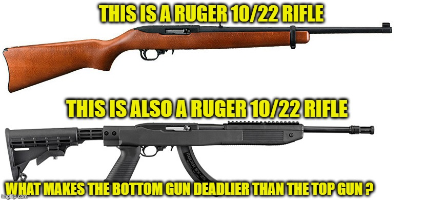 they both function the same | THIS IS A RUGER 10/22 RIFLE THIS IS ALSO A RUGER 10/22 RIFLE WHAT MAKES THE BOTTOM GUN DEADLIER THAN THE TOP GUN ? | image tagged in gun control,memes | made w/ Imgflip meme maker