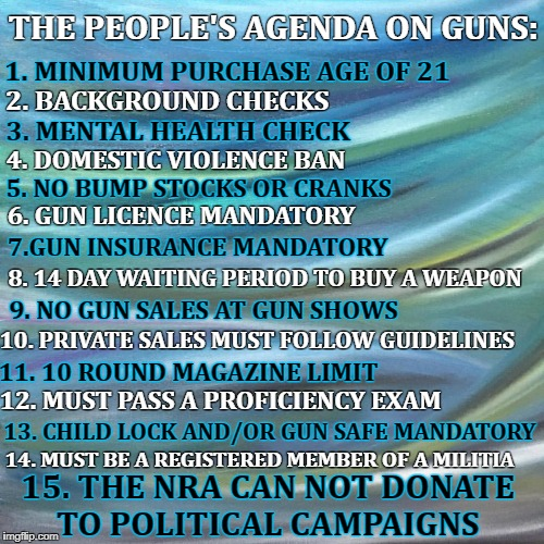 Gun | THE PEOPLE'S AGENDA ON GUNS: 1. MINIMUM PURCHASE AGE OF 21 2. BACKGROUND CHECKS 3. MENTAL HEALTH CHECK 4. DOMESTIC VIOLENCE BAN 5. NO BUMP S | image tagged in gun control,guns,gun laws | made w/ Imgflip meme maker
