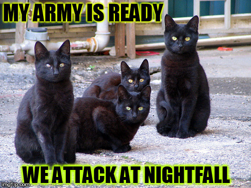 MY ARMY IS READY WE ATTACK AT NIGHTFALL | made w/ Imgflip meme maker