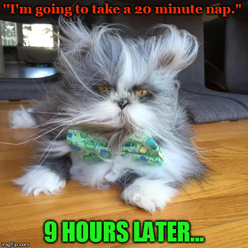 "''I'm going to take a 20 minute nap."" 9 HOURS LATER... 