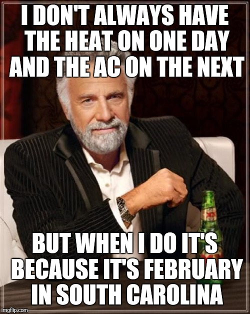 The Most Interesting Man In The World Meme | I DON'T ALWAYS HAVE THE HEAT ON ONE DAY AND THE AC ON THE NEXT BUT WHEN I DO IT'S BECAUSE IT'S FEBRUARY IN SOUTH CAROLINA | image tagged in memes,the most interesting man in the world | made w/ Imgflip meme maker