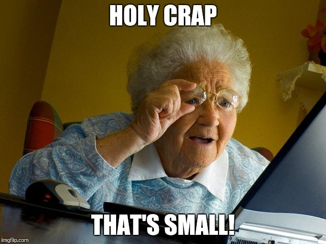 Grandma Finds The Internet Meme | HOLY CRAP THAT'S SMALL! | image tagged in memes,grandma finds the internet | made w/ Imgflip meme maker