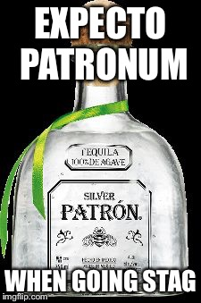 EXPECTO PATRONUM WHEN GOING STAG | image tagged in memes,harry potter | made w/ Imgflip meme maker