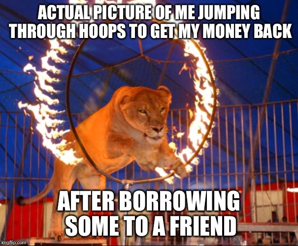 ACTUAL PICTURE OF ME JUMPING THROUGH HOOPS TO GET MY MONEY BACK AFTER BORROWING SOME TO A FRIEND | image tagged in jumping through hoops | made w/ Imgflip meme maker