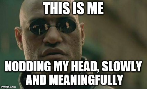 Matrix Morpheus Meme | THIS IS ME NODDING MY HEAD, SLOWLY AND MEANINGFULLY | image tagged in memes,matrix morpheus | made w/ Imgflip meme maker
