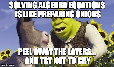 SHREK & ONIONS | SOLVING ALGEBRA EQUATIONS IS LIKE PREPARING ONIONS PEEL AWAY THE LAYERS... AND TRY NOT TO CRY | image tagged in shrek  onions | made w/ Imgflip meme maker