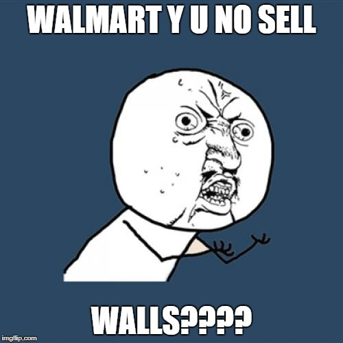 Y U No Meme | WALMART Y U NO SELL WALLS???? | image tagged in memes,y u no | made w/ Imgflip meme maker